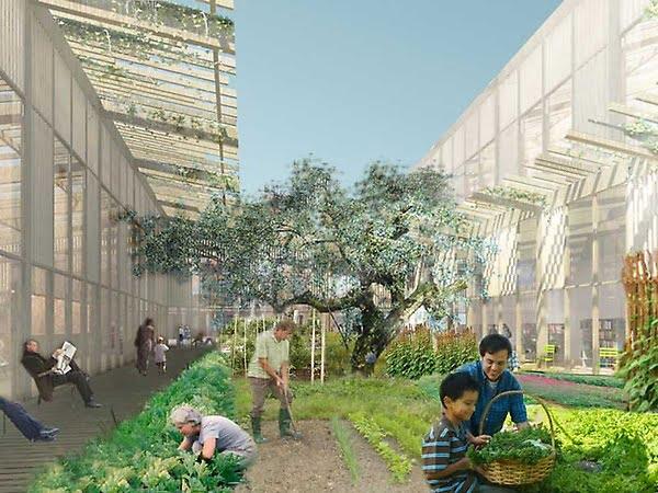 Risultati immagini per Ecosistema urbano