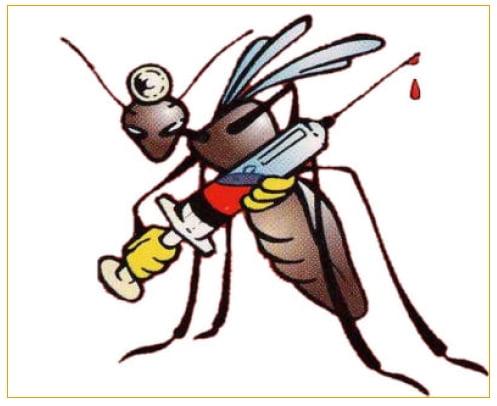 La lotta alle zanzare poco efficaci pipistrelli piante for Larve zanzare