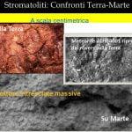 Figura 53 - Stromatoliti: confronti Terra Marte