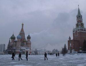 Mosca gelo