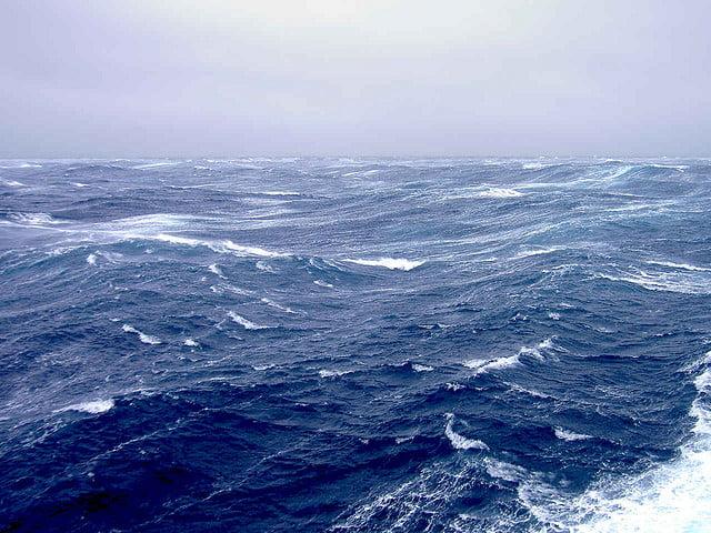 Sempre pi critica la situazione dell 39 artico la riduzione - Foto di animali dell oceano ...