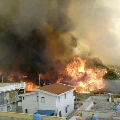vasto incendio nel tarantino occidentale distrugge 45