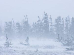 thorsten-milse-snow-storm-blizzard-churchill-hudson-bay-manitoba-canada