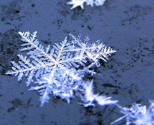 Maltempo: a Bagno a Ripoli pronto il piano operativo per neve e ...