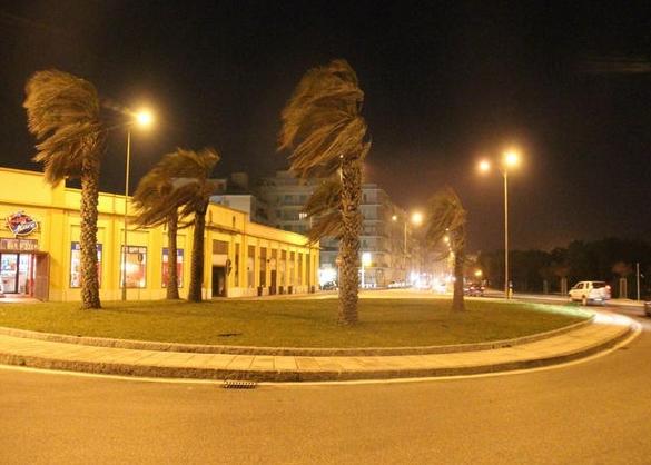 Ufficio Verde Comune Di Livorno : Forte vento a livorno lavori per la messa in sicurezza degli
