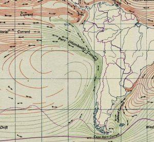 """Raffigurazione della famosa """"corrente di Humboldt"""""""