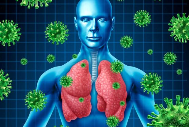 Virus MERS: primo caso registrato in Olanda