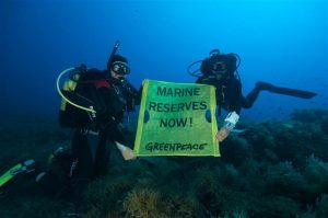 Greenpeace Divers in the Mediterranean Sea