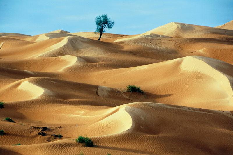 Scienza l 39 esperimento piallare le dune per leggere l for Colore vento di sabbia deserto