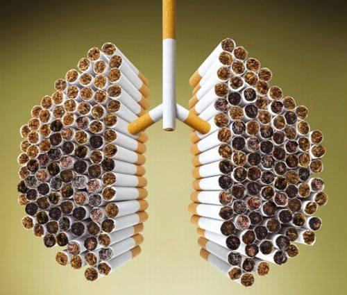 cancro polmone sigarette