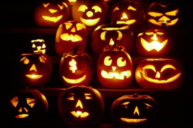 Halloween 750 mila kg di zucche delle marche per ricette for Foto zucche halloween