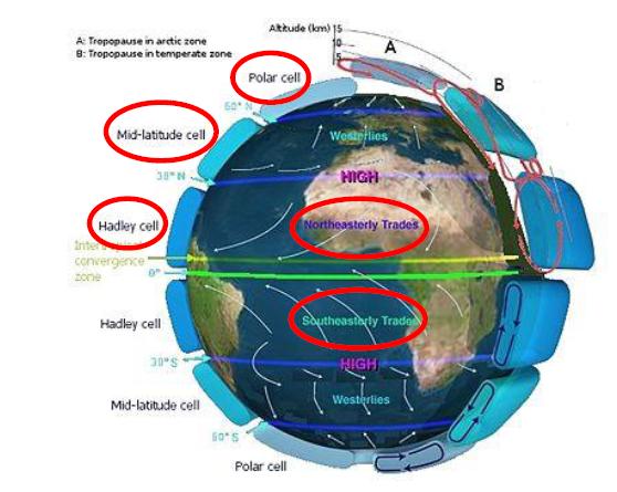 Fig.1 - Rappresentazione schematica della circolazione generale dell'atmosfera; si notino le tre celle e gli Alisei
