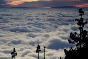 Uno spettacolare banco di stratocumuli osservato dall'alto, l'esteso tappeto di nubi basse è prodotto da una forte inversione termica