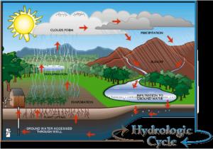 Figura 1 - Il ciclo dell'acqua o ciclo idrologico (hydrologic cycle)