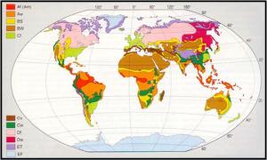Figura 1 – Classificazione e distribuzione geografica dei climi nel mondo.  Legenda: Af = clima tropicale senza stagione arida; Aw = clima tropicale con inverno secco; BS = clima arido della steppa; BW = clima arido del deserto; Cf = clima temperato caldo senza stagione secca; Cs = clima temperato caldo con estate secca; Cw = clima temperato caldo con inverno secco; Df = clima temperato freddo senza stagione secca; Dw = clima temperato freddo con inverno secco; ET = clima freddo della tundra; EF = clima freddo del gelo perenne.