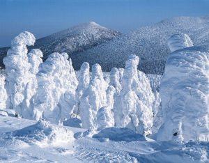 snowmonsters11