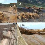 Figura 7: La tracimazione della diga Maccheronis. Moltissimi tronchi  d'albero d'alto fusto sono stati sradicati e trasportati creando seri problemi al deflusso dell'acqua.
