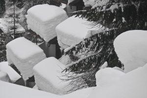 Neve--Foppolo18