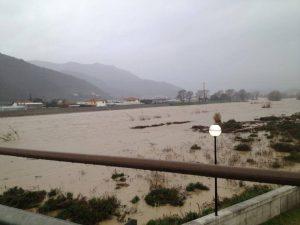 fiume centa maltempo liguria