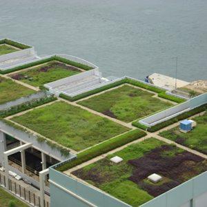 Bari diventa green col progetto shagree in arrivo 2000 for Casa di 2000 metri quadrati