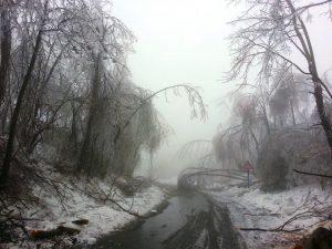Impressionante foto  da Subit (Udine