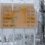 Gelicidio, il disastro di tre anni fa in Slovenia: un evento storico [GALLERY]