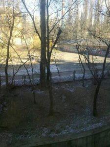 Piccoli accumuli di neve, dopo i rovesci delle scorse ore, resistono ancora nei parchi di Kiev (foto a cura di Yana Remenuik)