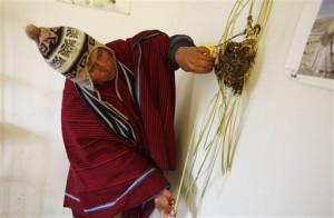 Bolivia Climate Change Indicators