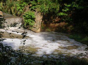 fiume sacco schiuma