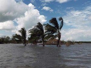 GREENPEACE: GIORNATA MONDIALE DELL?AMBIENTE, LE IMMAGINI DELLE CONSEGUENZE DEI CAMBIAMENTI CLIMATICI