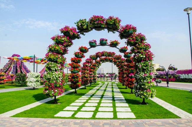 Dubai miracle garden il tripudio di colori e forme del giardino floreale pi grande del mondo - Il giardino di mezzanotte ...