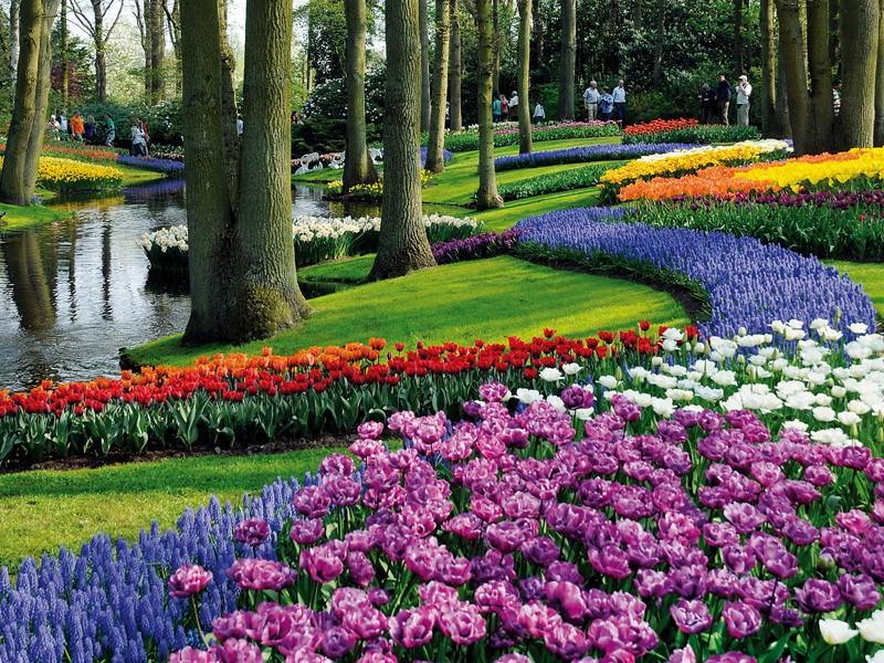 Keukenhof Olanda L 39 Incommensurabile Bellezza Del Parco