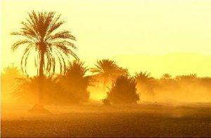 iran_desert