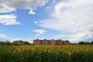 nuvole_lainate