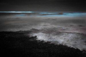 """Il fenomeno della """"fosforescenza marina"""" osservato vicino la costa"""