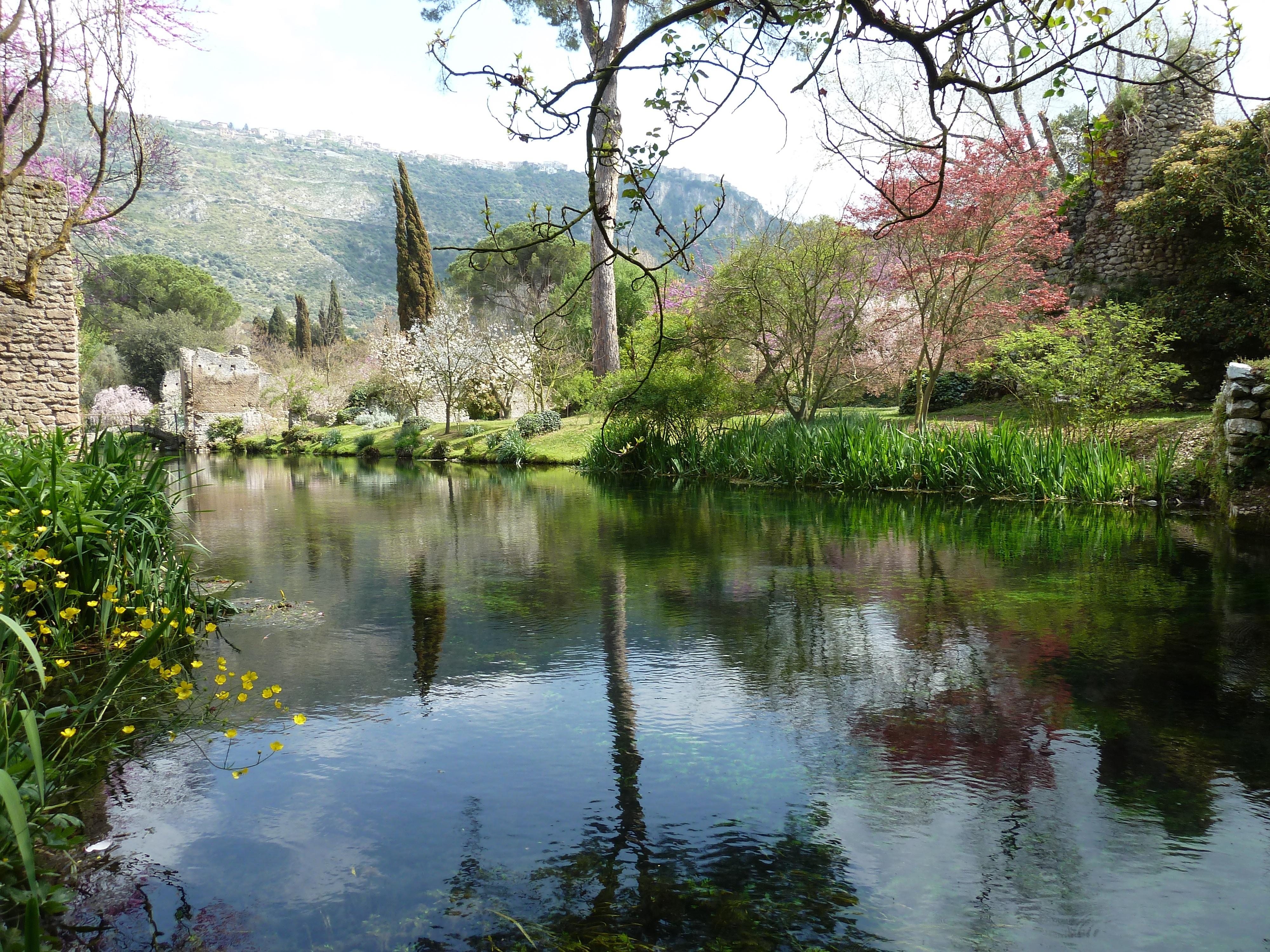 Il meraviglioso giardino di ninfa tra essenze floreali - Il giardino di ninfa ...