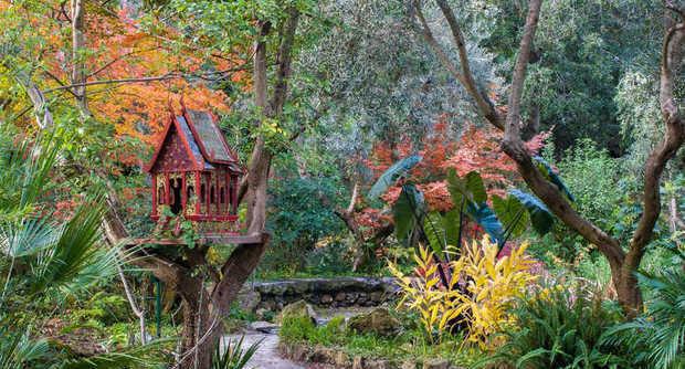 I giardini la mortella oasi incantata voluta dal compositore inglese sir william walton foto - Giardino la mortella ...