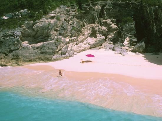 Pink sand beach la stupenda spiaggia rosa dell 39 isoletta for Pink sands beach in harbour islands