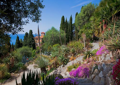 giardini botanici di hanbury: un piccolo eden al confine italo ... - Piccolo Giardino Al Mare