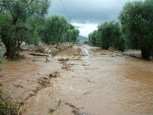 alluvione gargano 09
