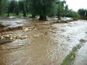 alluvione gargano 11