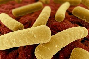 Medicina & Tecnologia: rilevare le infezioni attraverso