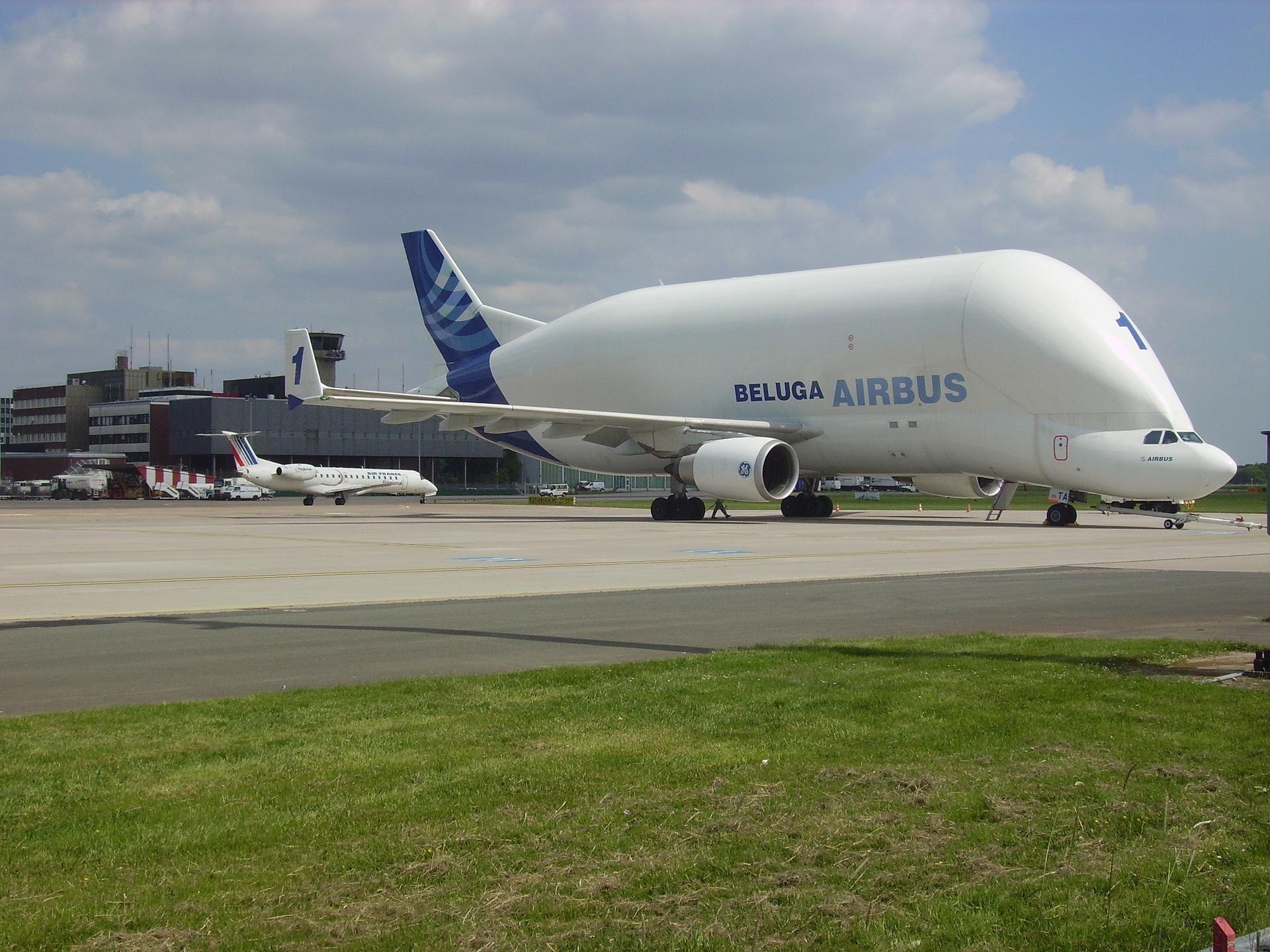 Beluga il gigante dei cieli ecco l 39 aereo pi strano e for Il piu alto dei cieli cruciverba