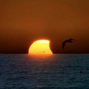 eclissi solare parziale (13)