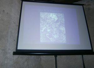 Venafro (Isernia): scheletro bambino del Neolitico emerso durante scavo per gasdotto