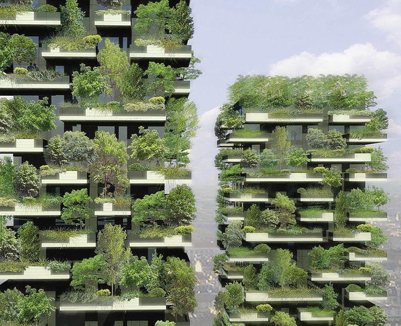 bosco verticale di boerio studio un eccezionale esempio