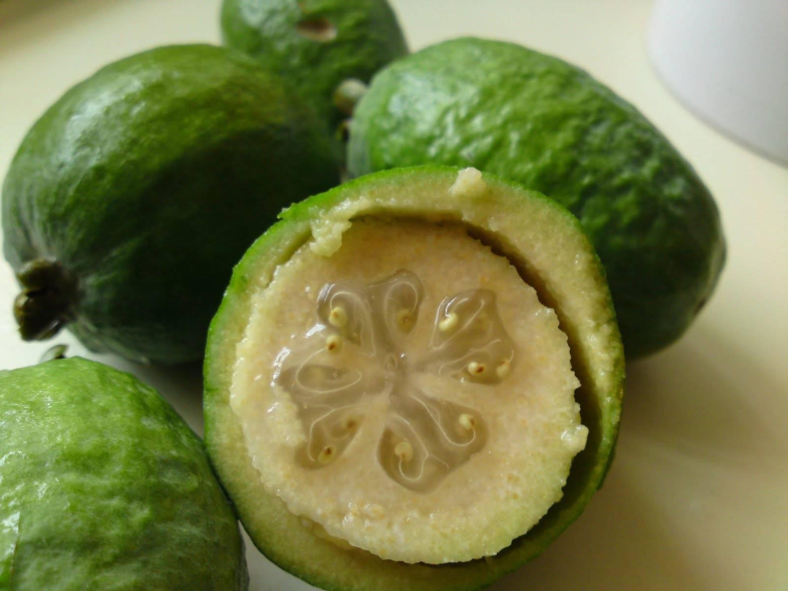 feijoa un frutto buonissimo ricco di propriet benefiche