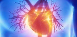 Nefrocardiologia