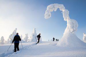 Snowshoeing at Riisitunturi National Park.
