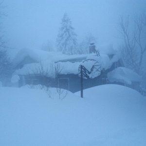 buffalo snowvember